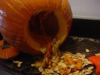 Gutting a pumpkin